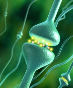 How Our Hormones Affect Weight Gain Omaha Cosmetic Surgery